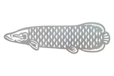 Arapaima Fish DXF File