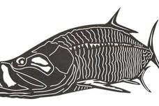 Swimming Bass DXF File