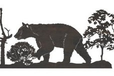 Bear Driveway Topper