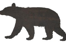 Walking Black Bear DXF File