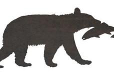 Bear Eating Salmon DXF File
