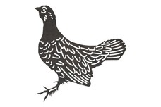 Grouse DXF File