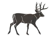 White-tailed Buck Walking DXF File