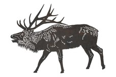 Bellowing Sambar Buck DXF File