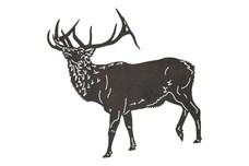 Red Buck DXF File