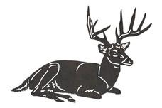 Relaxing Buck DXF File