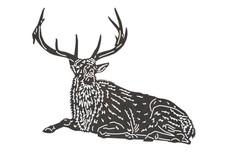 Buck Sitting DXF File