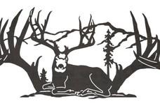 Buck Wall Art