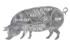 Butcher Chart Stock Art