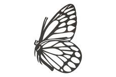 Butterfly Garden Art