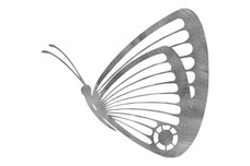 Flying Butterfly Side-Profile DXF File