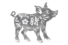 Chinese Pig Stock Art