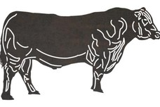 Cow Side-View DXF File