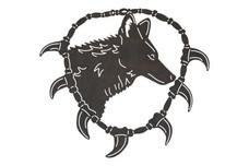 Coyote Wall Art