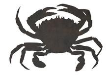 Crab Stock Art