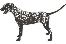 Dalmatian DXF File
