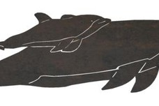Swimming Dolphins DXF File