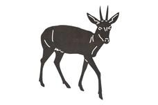Duiker Antelope DXF File
