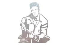 Elvis Presley Wall Art