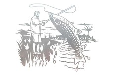 Fishing Stock Art