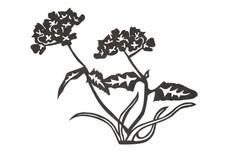 Flowers Stock Art
