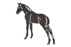 Newborn Foal DXF File