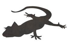 Gecko Profile DXF File