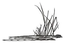 Helophyte Plant DXF File