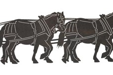 Horses Walking DXF File