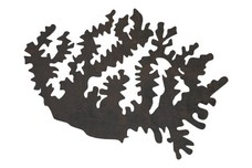 Patch of Kelp DXF File