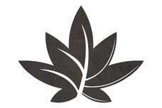 Fanning Leaf Model DXF File