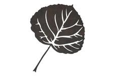 Poplar Leaf DXF File