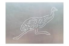 Ostrich Stock Art