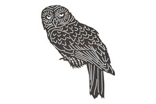 Barred Owl DXF File