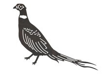 Pheasant Standing DXF File