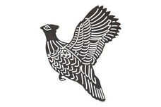 Pheasant in Flight DXF File