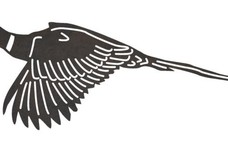 Flying Pheasant DXF File