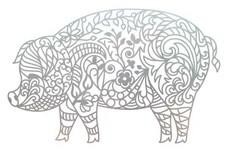 Pig Wall Art