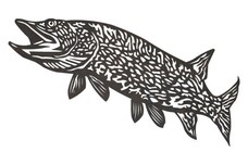 Swimming Up Pike DXF File
