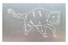 Raccoon Stock Art