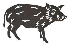 Razorback Hog DXF File
