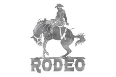 Rodeo Wall Art