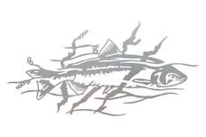 Salmon Stock Art