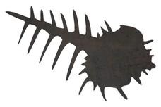 Fish Skeleton DXF File