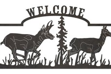 South Andean Deer Welcome Sign