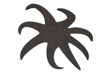 Lying Starfish DXF File