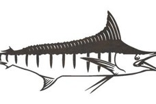 Swordfish DXF File
