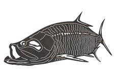 Tarpon Fish DXF File