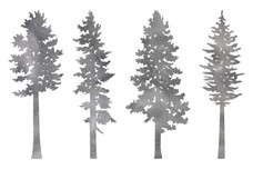 Pine Tree Types DXF File
