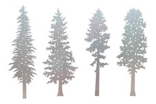 Four Tree Scenes DXF File